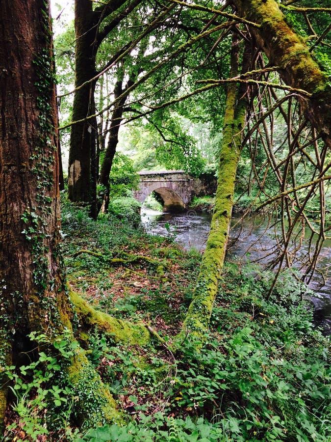 Pont de Ballynahinch photo stock