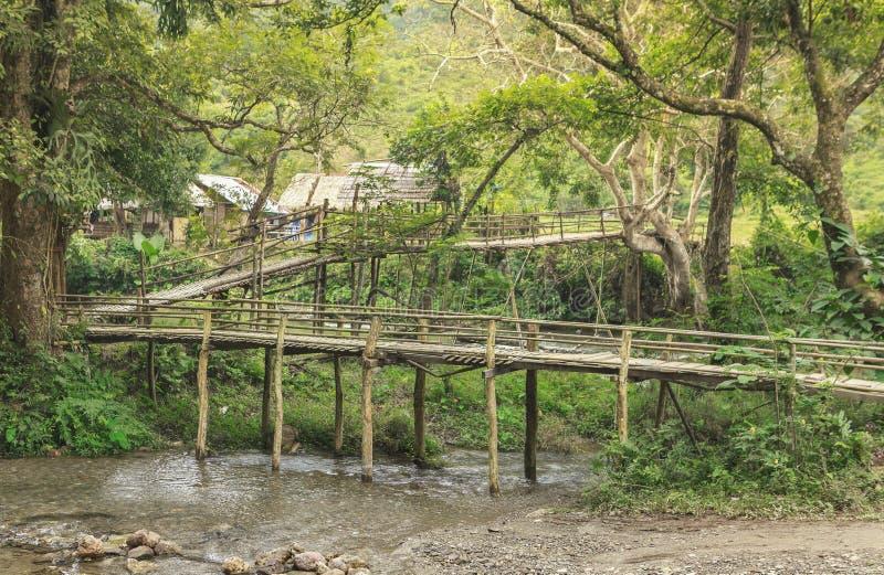 Pont de bambous image stock