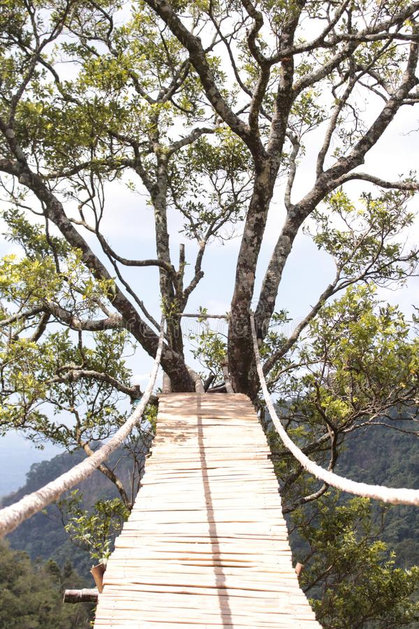 Pont de corde dangereux en bois photos stock