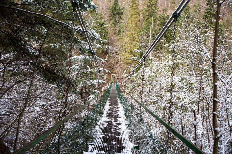 Pont de corde extrême au-dessus de rivière de Hornad dans le paradis slovaque image libre de droits