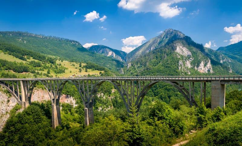 Pont de Djurdjevic au-dessus de Tara River Canyon images libres de droits