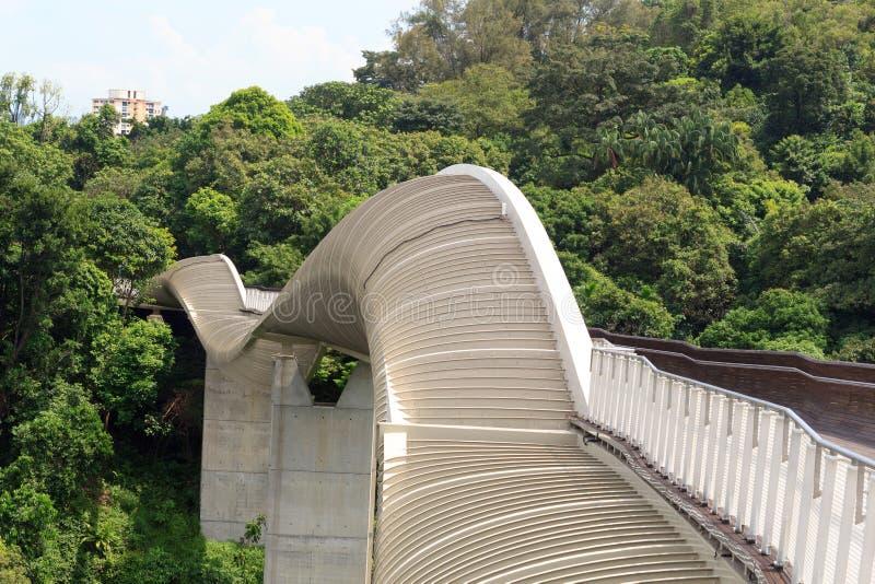 Pont de Henderson Waves sur la forêt tropicale de Faber de bâti photo libre de droits