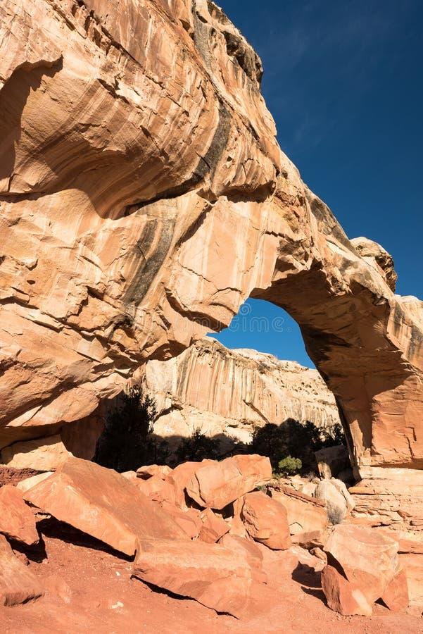 Pont de Hickman - parc national de r?cif capital, Utah photo libre de droits
