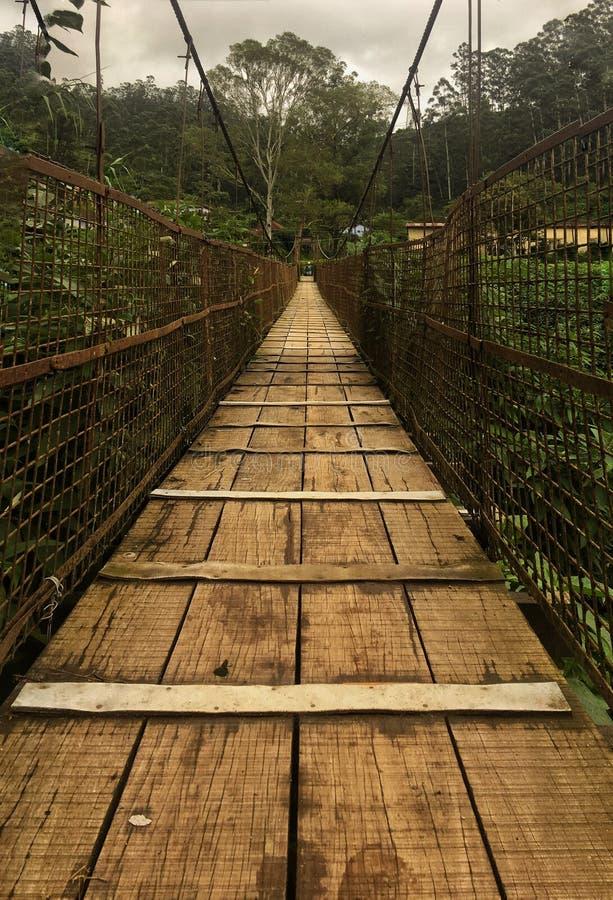 Pont de Munnar images libres de droits