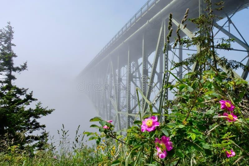 Pont de passage de duperie en brouillard photos libres de droits