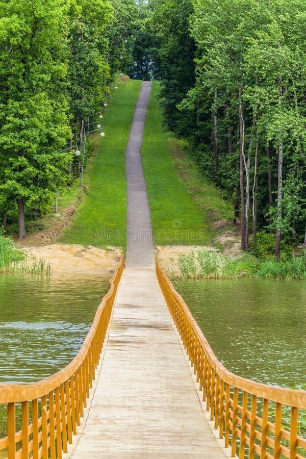 Pont de ponton en bois sur un lac de forêt images libres de droits