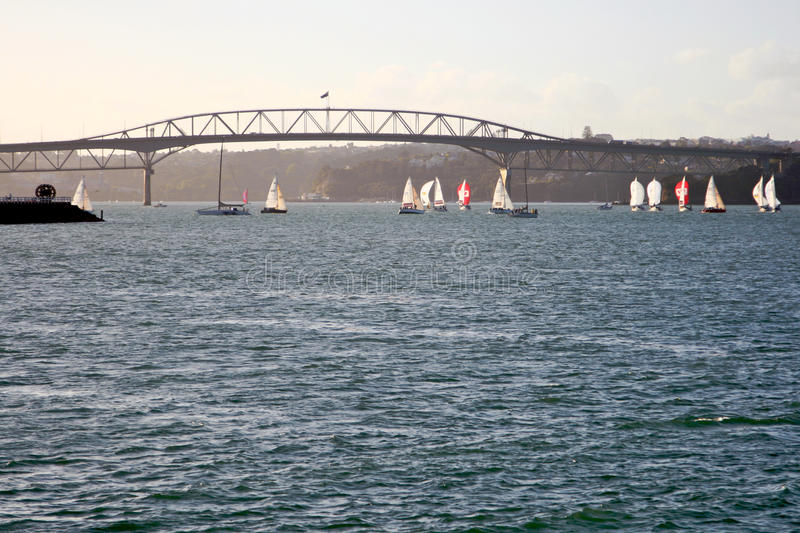 Pont de port d'Auckland photographie stock libre de droits