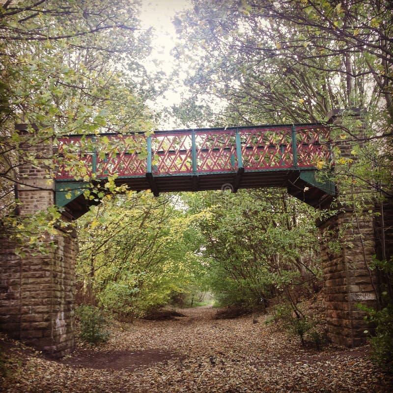 Pont de région boisée photographie stock libre de droits