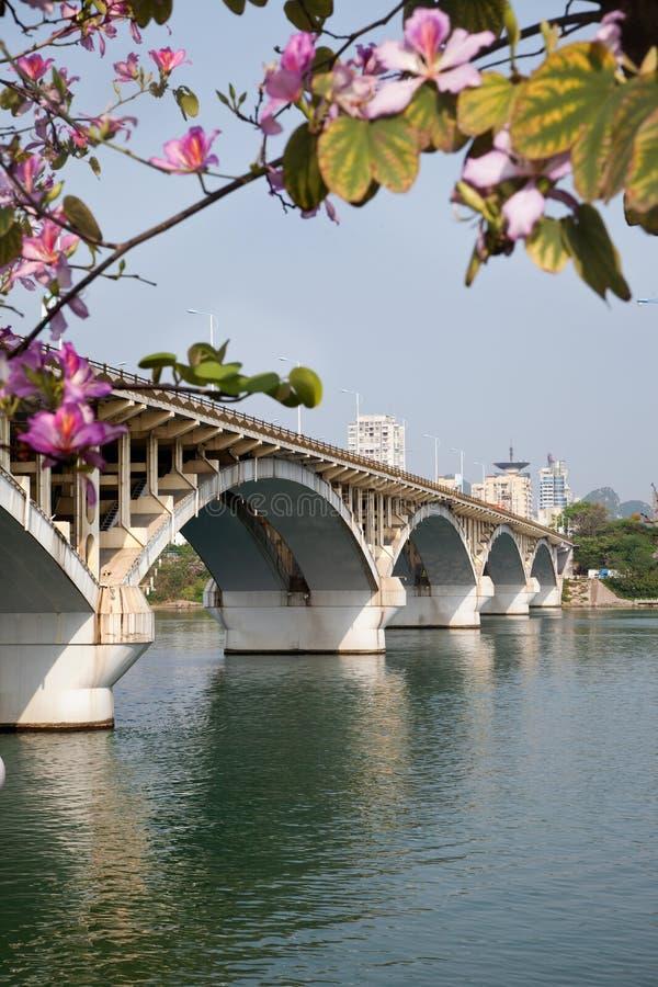 Pont de voûte au printemps photos stock