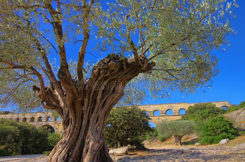 Download Pont du Gard stock photo. Image of roman, france, history - 26022642