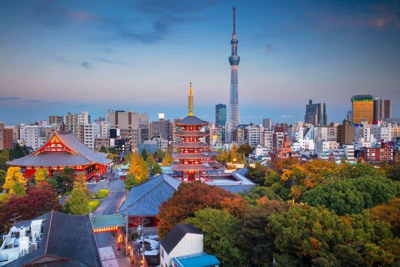 Pont en arc-en-ciel à Tokyo, Japon images stock