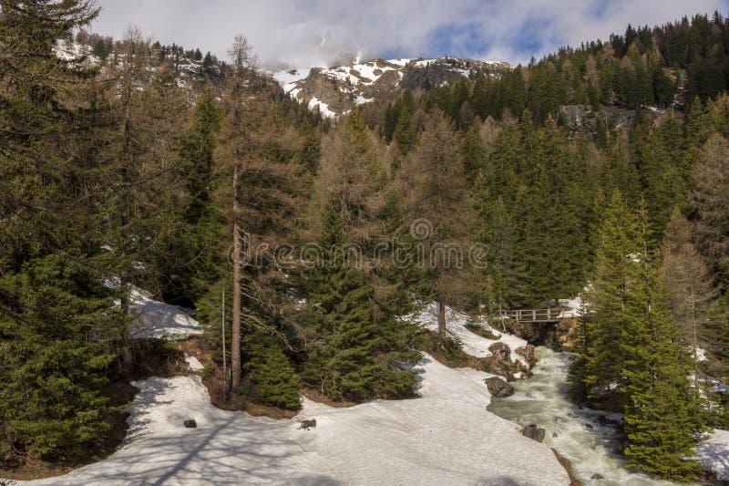 Pont en bois au-dessus d'une petite rivière dans une forêt neigeuse avec le mountai photos stock