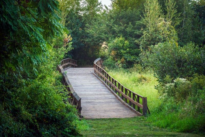 Pont en bois au-dessus de pré image libre de droits