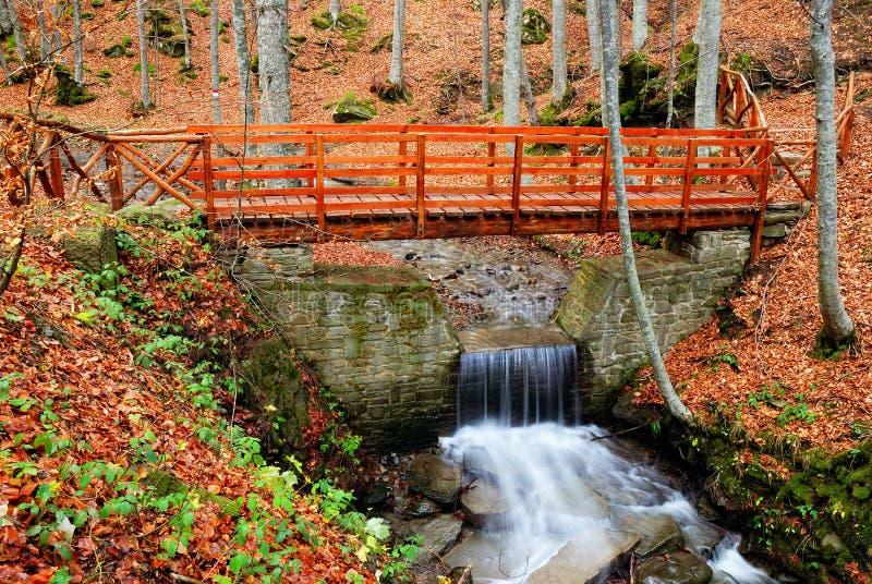 Pont en bois au-dessus du courant image libre de droits
