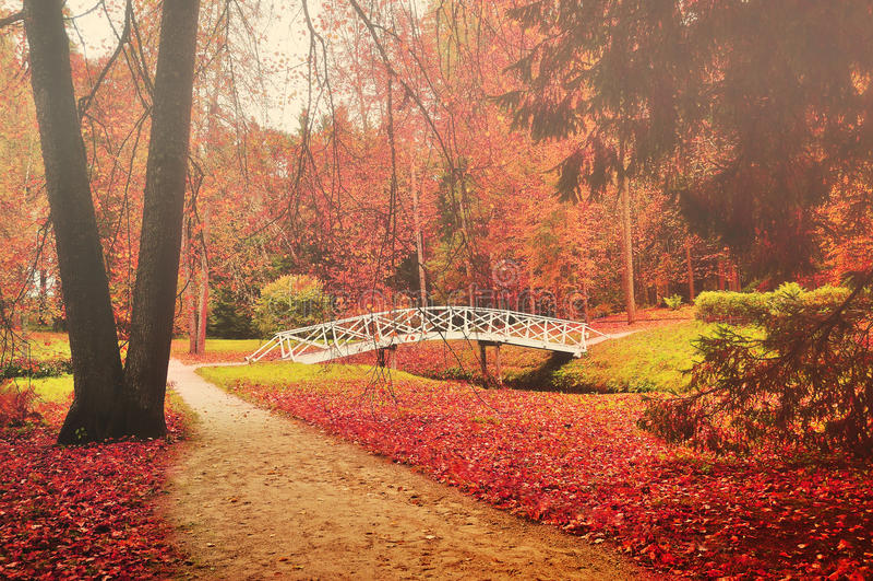 Pont en bois blanc en parc image libre de droits