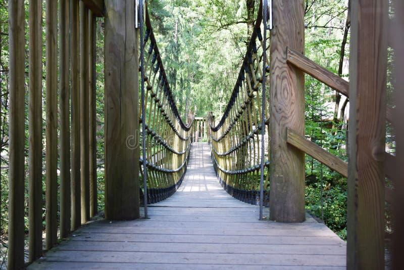 Pont en bois dans Cadore, montagnes de Dolomity, Italie photographie stock
