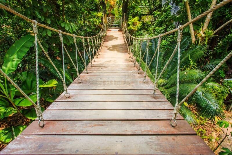 Pont en bois dans le jardin, Thaïlande photographie stock