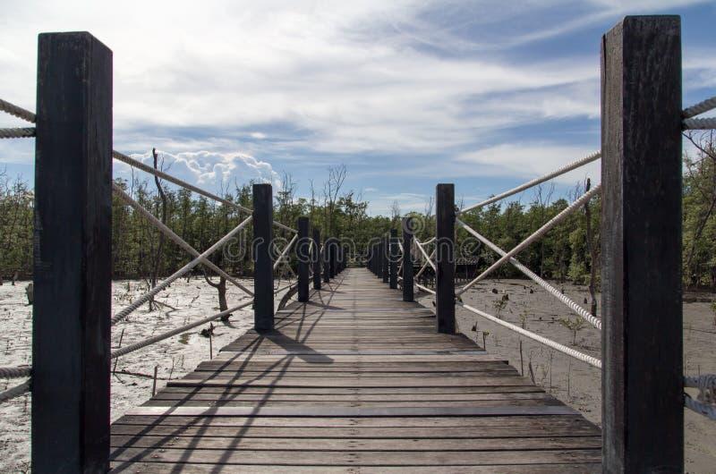 Pont en bois dans le palétuvier image libre de droits