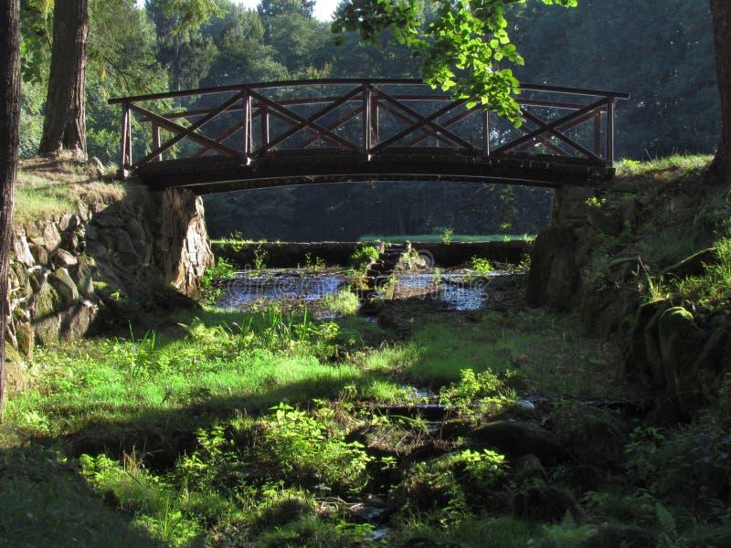 Pont en bois dans le style japonais, de forêt toujours la vie image libre de droits
