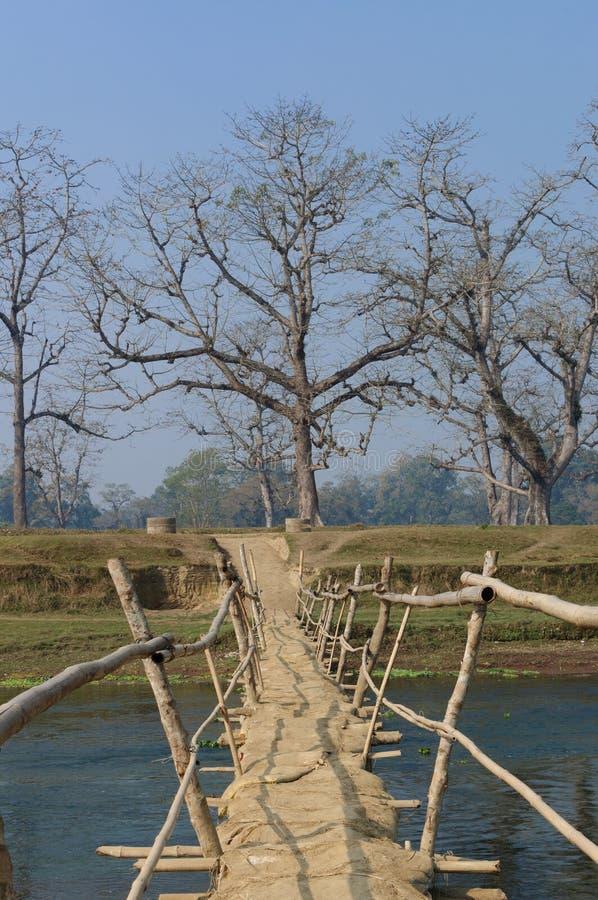 Pont en bois dans le village dans le pont du Népal A à travers la rivière Rapti, en parc national de Chitwan nepal photographie stock libre de droits