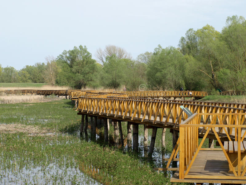 Pont en bois de pied images libres de droits