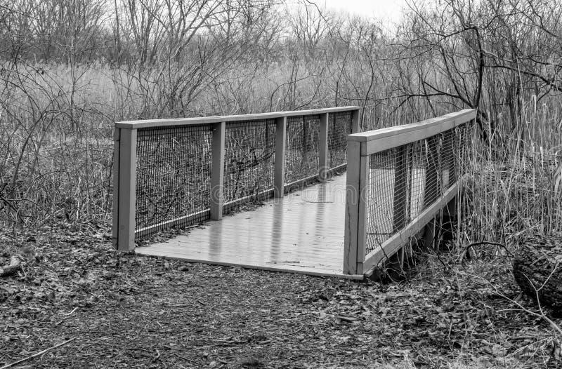 pont en bois de pied dans la forêt images libres de droits