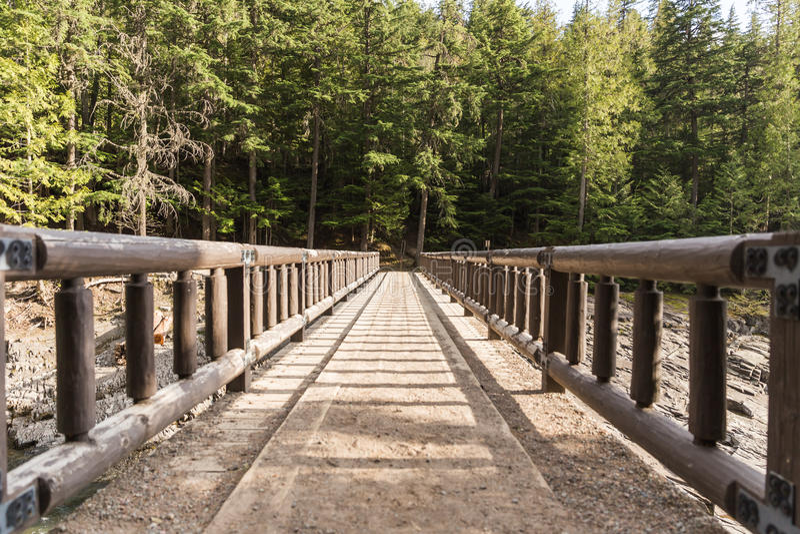 Pont en bois de pied menant à la forêt images stock