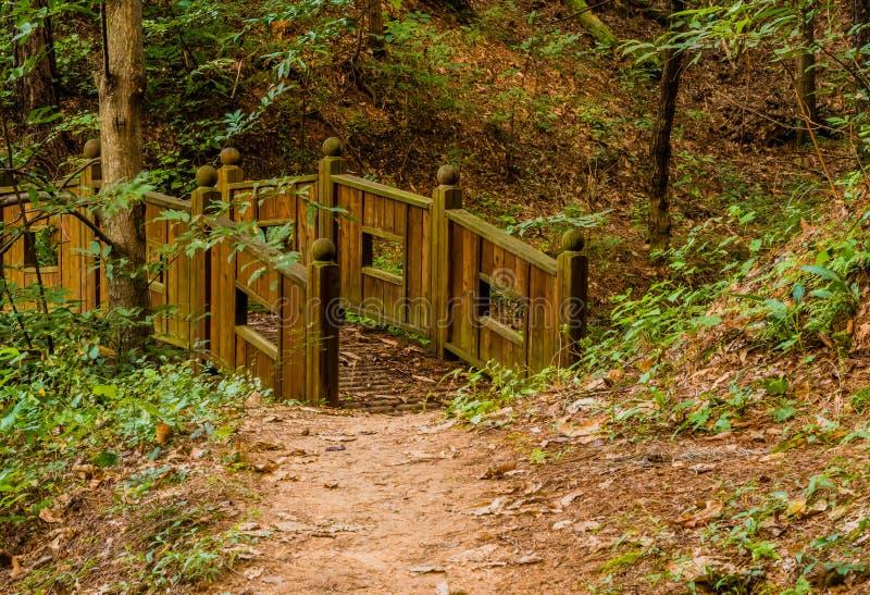 Pont en bois de pied en parc de région boisée photographie stock