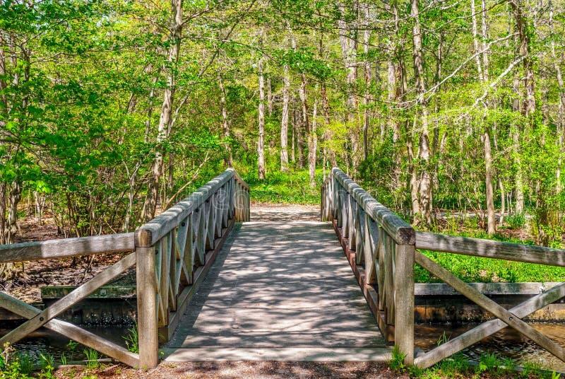Pont en bois de ressort photos libres de droits