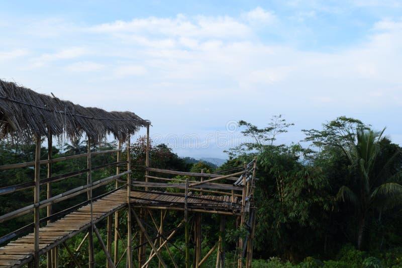 Pont en bois en colline photo libre de droits