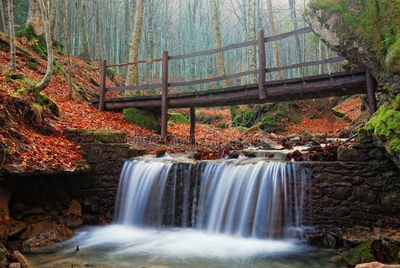 Pont en bois en parc naturel photographie stock