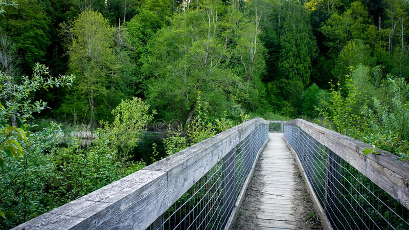 Pont en bois et en métal dans les bois image stock