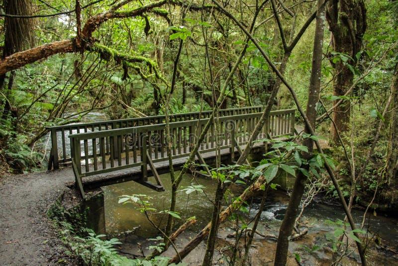 Pont en bois menant aux automnes de Purakaunui chez le Catlins, île du sud du Nouvelle-Zélande image libre de droits