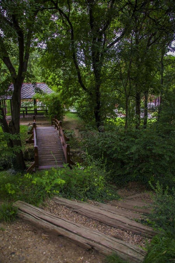 Pont en bois en parc photographie stock