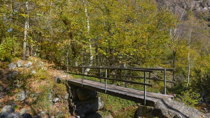 Pont en bois qui traverse une rivière, dans les bois image stock