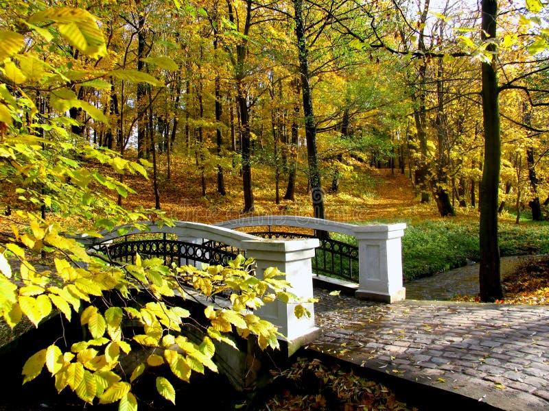 Pont en parc avec les feuilles d'automne tombées image libre de droits