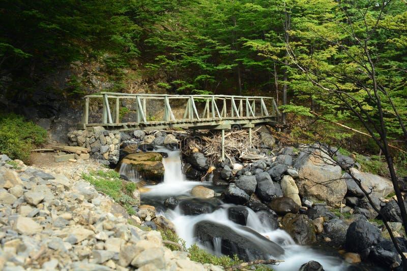 Download Pont En Parc National De Torres Del Paine, Chili Photo stock - Image du stationnement, voyage: 87702358