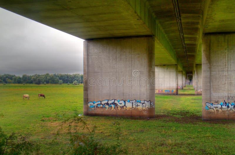 Pont en route au-dessus de zone inondable photographie stock libre de droits