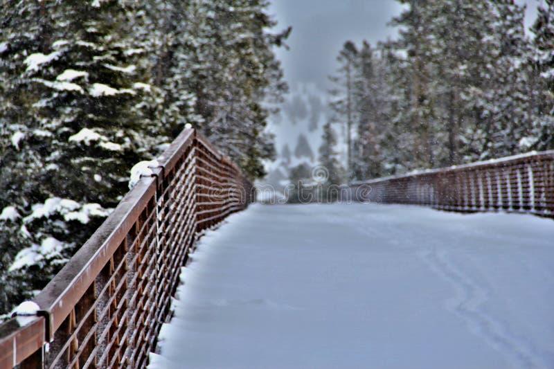 Pont en ski image libre de droits