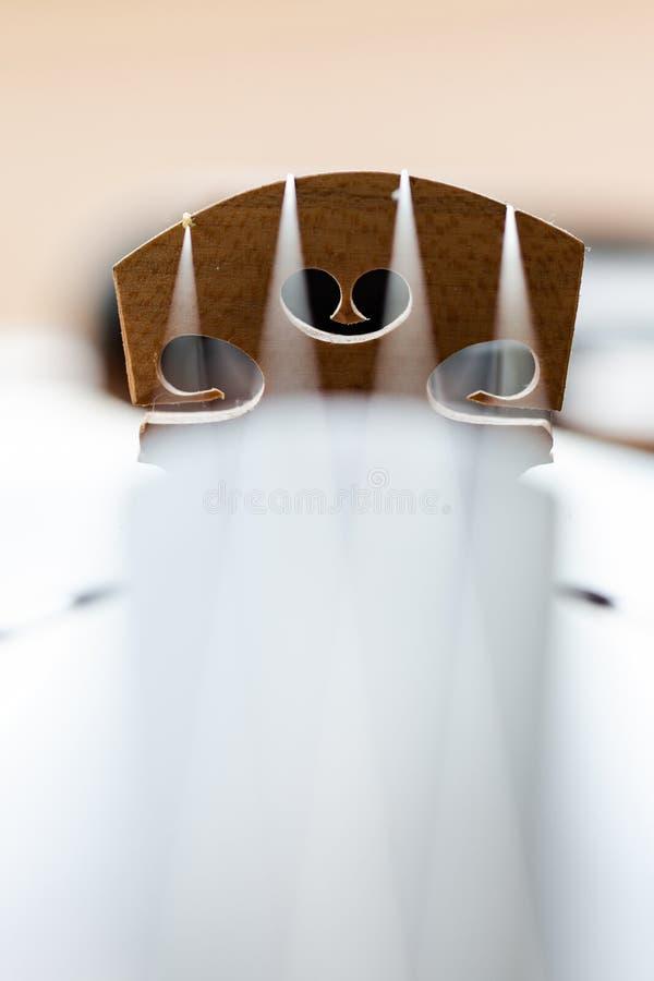 Pont en violon avec des détails de macro de ficelles image libre de droits