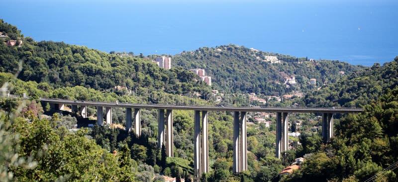 Pont fixe au-dessus de forêt verte photographie stock libre de droits