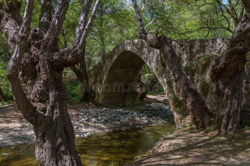 Pont médiéval pittoresque de Tzelefos dans Troodos, Chypre photo libre de droits