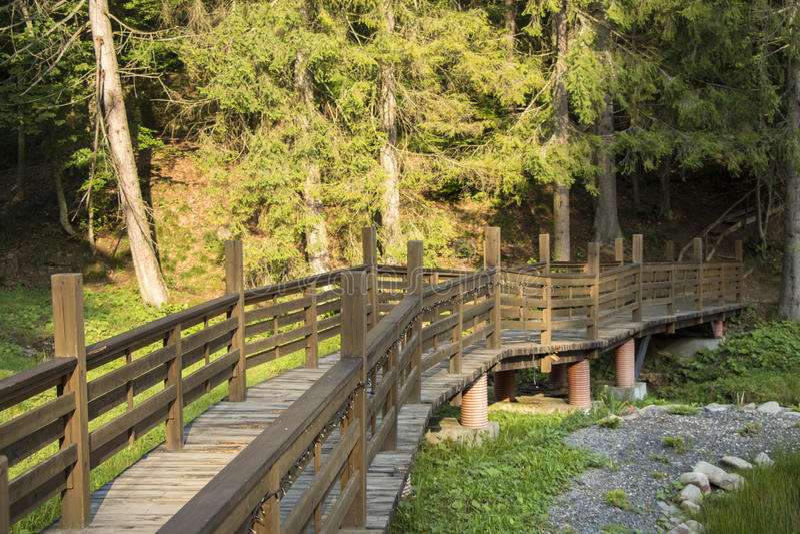 Download Pont par la forêt image stock. Image du personne, bois - 77152819