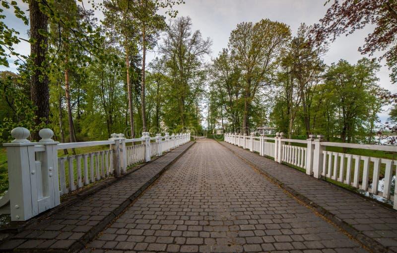 Pont par la forêt de ressort photo stock
