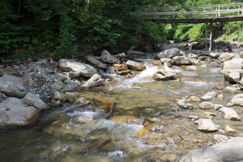 Pont piétonnier au-dessus de l'eau claire et diaphane d'une montagne images stock