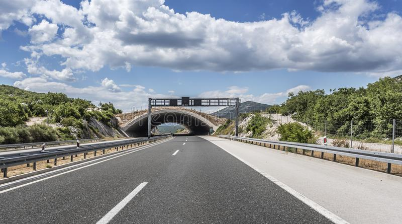 Pont pour des animaux au-dessus d'une route image stock