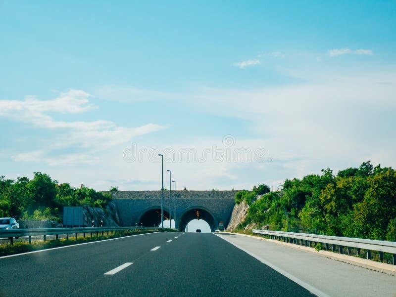 Pont pour des animaux sur la route Pont vert au-dessus de la route photo libre de droits