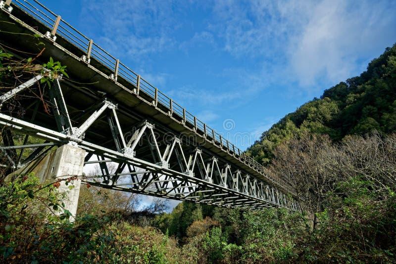 Pont routier au-dessus de la rivière Buller à Murchison, Nouvelle-Zélande photographie stock libre de droits
