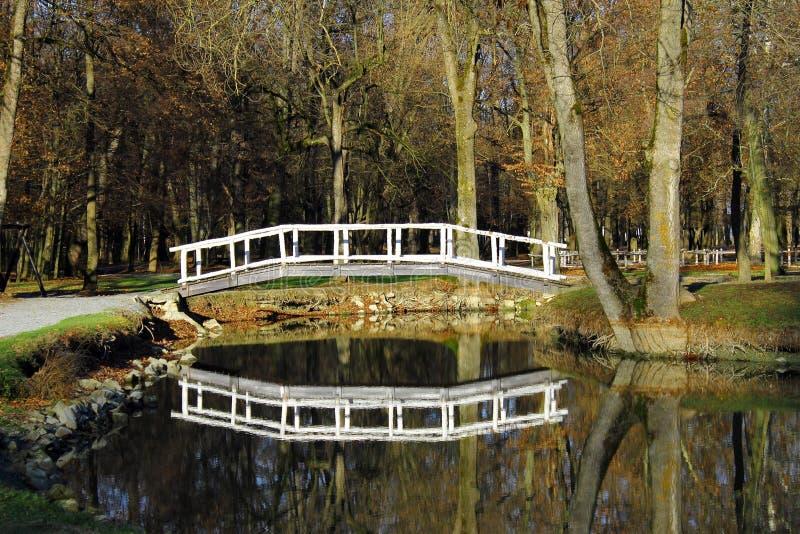 Pont sur le lac image libre de droits