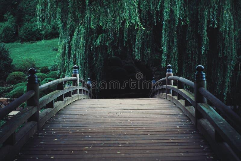 Pont surréaliste sur un chemin à travers les bois photos libres de droits